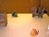 6_pepe-galan_proxectos-e-repricas_colexio-arquitectos-a-couna-1998_
