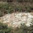 Transferencia, Desprazamento, I – 2005